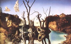 сальвадор дали,  художник,  живописец,  сюрреализм,  картина,  лебеди,  отражающиеся в слонах
