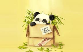 посылка, panda, bamboo