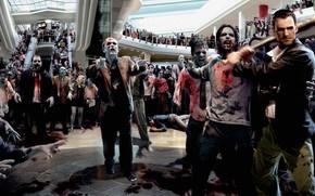 Zwoki, bat, zombie