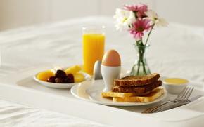 cibo, dolce, prima colazione, pane, Pane tostato, uovo, succo, arancione. arancione, fiori, vaso