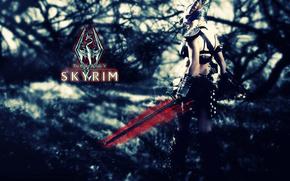 TES V - Skyrim, TES, Skyrim, Warrior, armor, sword