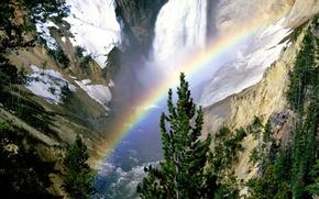 rainbow, rocks, tree
