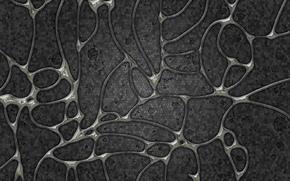 клетки, оболочки, серый