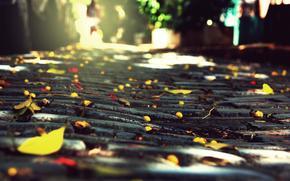 city, bruschatka, stones, autumn, foliage