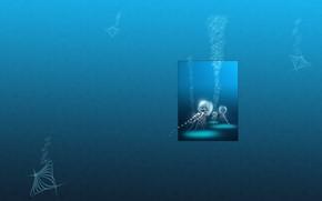 Meduza, pcherzyki, minimalizm