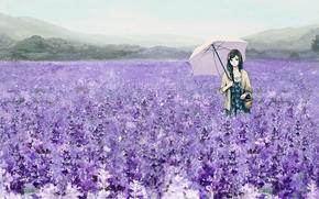 арт,  девушка,  поле,  цветы,  лаванда,  зонт,  зонтик,  корзина