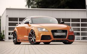 Audi,  Оранжевый,  Город,  Дорога, автомобили, машины, авто