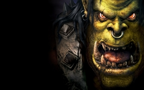 war craft, power of chaos, Orcs, monster, green, face, eyes, shine, nose, ring, jaws, canines, language, slobber, armor, Black Background