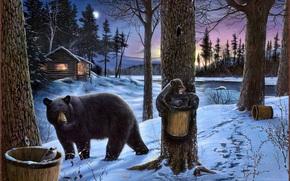 immagine, sopportare, Bears, natura, foresta, fiume, luna, inverno, piccola capanna, casa