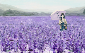 девушка,  цветы,  зонтик