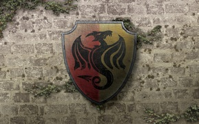 coat of arms, dragon, wall