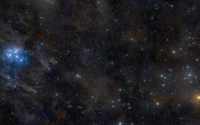 плеяды,  гиады,  созвездие,  телец,  звезды