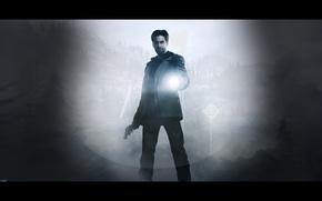 game, alan wake, night, flashlight, fog, view