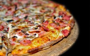 еда, пища, вкусно, сытно, пицца, макро