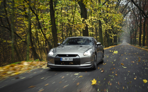 rate, road, forest, autumn, foliage, nature, wallpaper, nissan