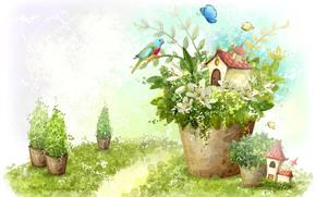 Bild, Pflanzen, Topf, nach Hause, Htte, Vogel, Papagei, Schmetterlinge, Blumen, Lilie