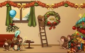 Transformays, Natale, Mouse, mouse, abete, regali, formaggio, Capodanno