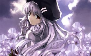 女孩, 撕, 花卉, 鸢尾花, 贝雷帽, 云