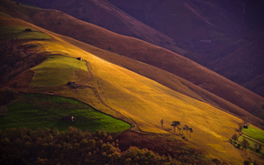 склон, долина, поля