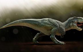 dinosauro, tirannosauro, Rex, fauci, denti, canini, predatore, pangolin, Tirex.