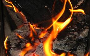 fuoco, legna da ardere, fal