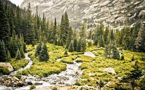 пейзаж, природа, горы, лес, деревья, камни, река, трава