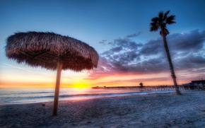 пляж, закат, берег, пальма
