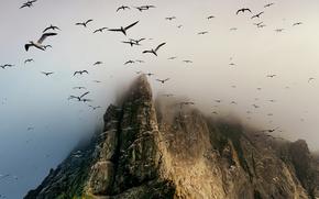 Скала, чайки, облака