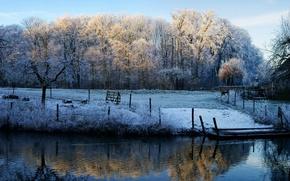 dawn, Frosty, Morning