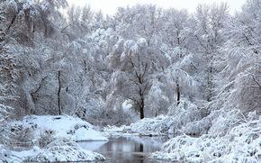 зима, река, деревья, снег