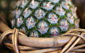 pineapple, basket, Macro