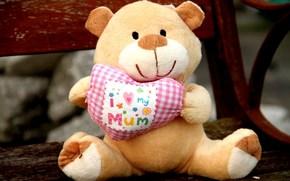 мягкая, игрушка, медведь, сердце, я люблю свою маму