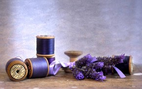 лаванда, цветы, цветок, фиолетовый, нитки, катушки