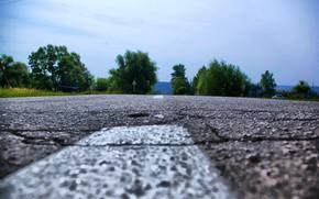 strada, natura, asfalto