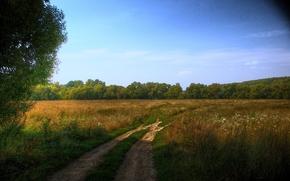road, landscape