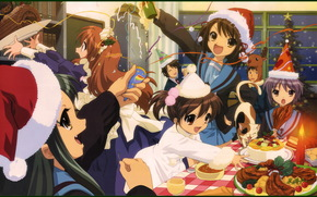 Melancholy of Haruhi Suzumiya, Haruhi, New Year, holiday, joy, situation