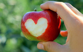 яблоко, сердце, рука