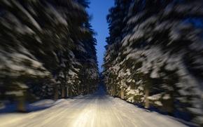 макро, дорога, зима, снег, деревья, Финляндия, движение