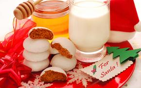 красивая, красота, торты, новогодние, рождественские печенья, цвета, охладить, пить, Санта, праздник, мед, милая, с Рождеством, молоко, хорошо, фотографии, красивый, красный, снежинки, звезды