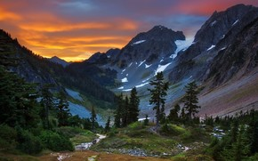 nature, Mountains, forest, view