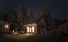 ночь, звезды, девушка, свет, дом, лес, ёлки, benoitpaille