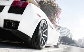 Lamborghini, machine, white, road, cars, machinery, Car