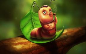 caterpillar, macho, goblet, cigar, list, graphics, picture