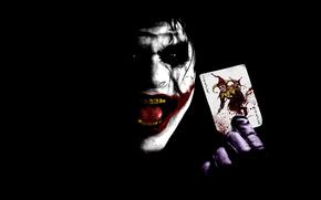 Joker, Karte, Becher, Gesicht, Schnauze