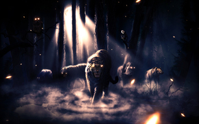 night, forest, fog, animals, animals, tiger, lion, bear, owl, Monkey, wolf