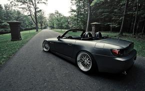 road, forest, Honda, roadster, honda