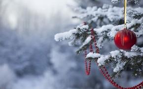 новый год, праздник, новогодние обои, елка, снег, игрушки, Новый год