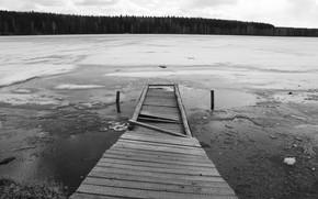 ice, Bridge, Lake, forest, black and white