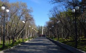 Магадан, парк, деревья
