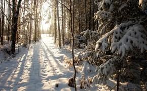 Phillips, Wisconsin, snow, Winter